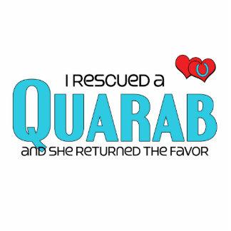 I Rescued a Quarab (Female Horse) Photo Cut Outs