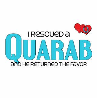 I Rescued a Quarab (Male Horse) Photo Sculptures