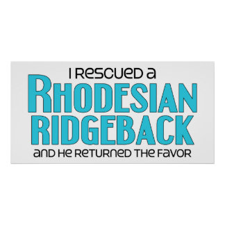 I Rescued a Rhodesian Ridgeback (Male Dog) Poster
