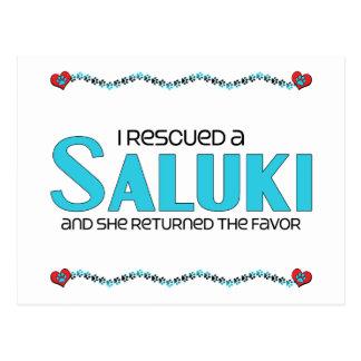I Rescued a Saluki (Female Dog) Postcard