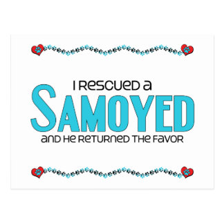 I Rescued a Samoyed (Male Dog) Postcard