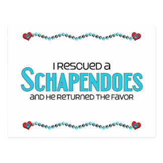 I Rescued a Schapendoes (Male Dog) Postcard