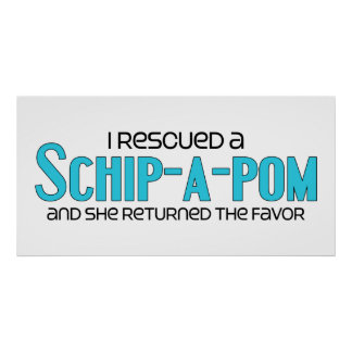I Rescued a Schip-A-Pom (Female) Dog Adoption Poster