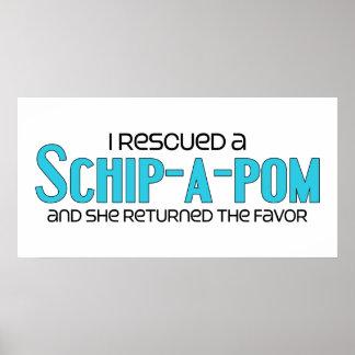 I Rescued a Schip-A-Pom (Female) Dog Adoption Poster