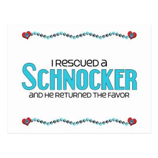 I Rescued a Schnocker (Male) Dog Adoption Design Postcard