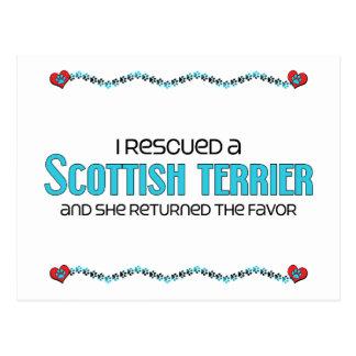 I Rescued a Scottish Terrier (Female Dog) Postcard