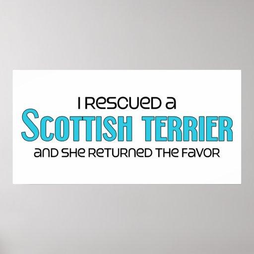 I Rescued a Scottish Terrier (Female Dog) Print