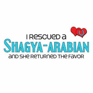 I Rescued a Shagya-Arabian (Female Horse) Photo Cut Out