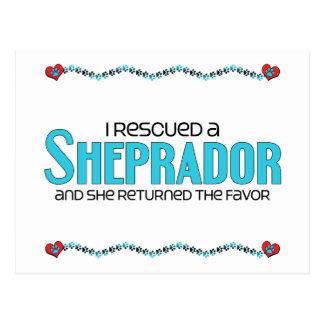 I Rescued a Sheprador (Female) Dog Adoption Design Postcard