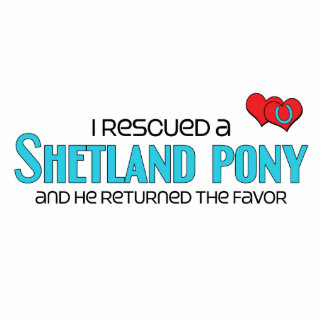 I Rescued a Shetland Pony (Male Pony) Statuette