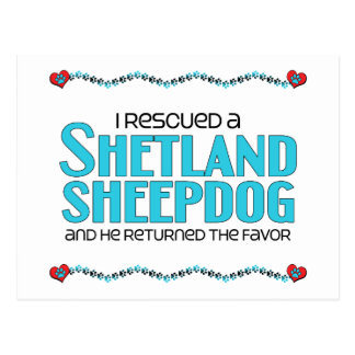 I Rescued a Shetland Sheepdog (Male Dog) Postcard