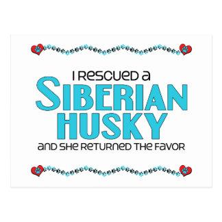 I Rescued a Siberian Husky (Female Dog) Postcard