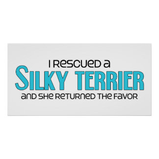 I Rescued a Silky Terrier (Female Dog) Poster