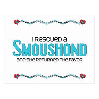 I Rescued a Smoushond (Female Dog) Postcard