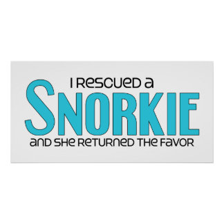 I Rescued a Snorkie (Female) Dog Adoption Design Poster