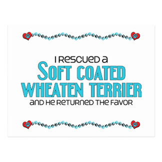 I Rescued a Soft Coated Wheaten Terrier (Male Dog) Postcard