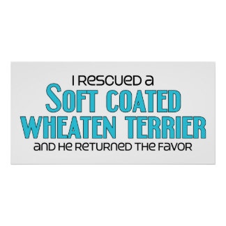 I Rescued a Soft Coated Wheaten Terrier (Male Dog) Poster