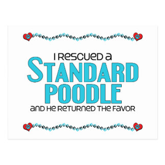 I Rescued a Standard Poodle (Male Dog) Postcard
