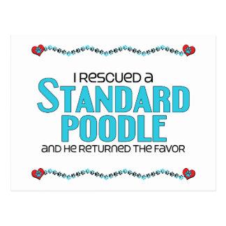 I Rescued a Standard Poodle (Male Dog) Postcard