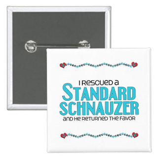 I Rescued a Standard Schnauzer (Male Dog) Buttons