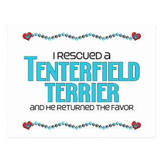 I Rescued a Tenterfield Terrier (Male Dog) Postcard