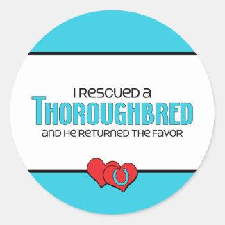 I Rescued a Thoroughbred (Male Horse) Classic Round Sticker