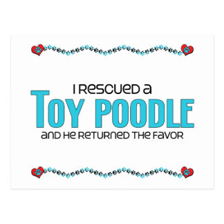 I Rescued a Toy Poodle (Male Dog) Postcard