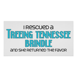 I Rescued a Treeing Tennessee Brindle (Female Dog) Poster