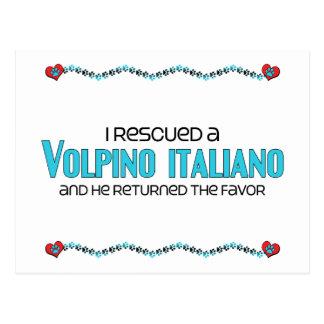 I Rescued a Volpino Italiano (Male Dog) Postcard