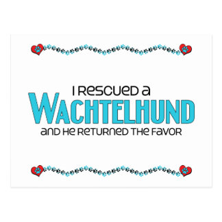 I Rescued a Wachtelhund (Male Dog) Postcard