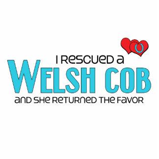 I Rescued a Welsh Cob (Female Pony) Acrylic Cut Out