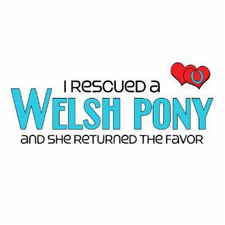 I Rescued a Welsh Pony (Female Pony) Photo Cut Outs