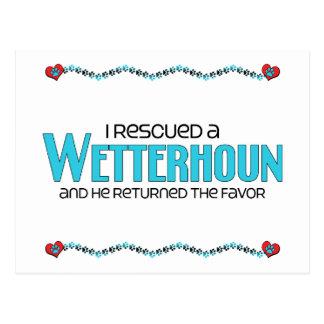 I Rescued a Wetterhoun (Male Dog) Postcard