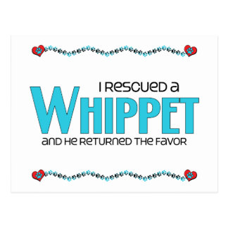 I Rescued a Whippet (Male Dog) Post Cards
