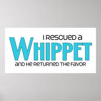 I Rescued a Whippet (Male Dog) Print