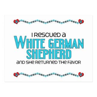 I Rescued a White German Shepherd (Female Dog) Postcard