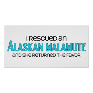 I Rescued an Alaskan Malamute (Female Dog) Posters