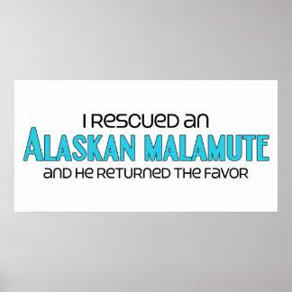 I Rescued an Alaskan Malamute (Male Dog) Print