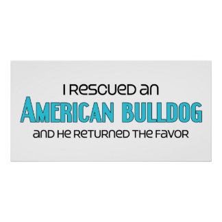 I Rescued an American Bulldog (Male Dog) Poster