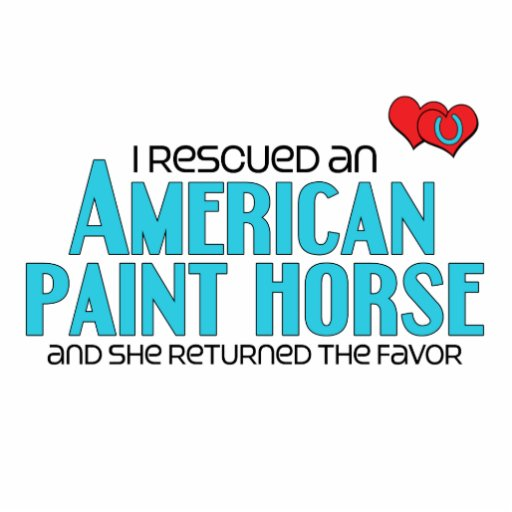 I Rescued an American Paint Horse (Female Horse) Cut Out