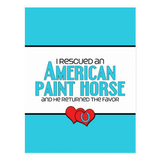 I Rescued an American Paint Horse (Male Horse) Postcard