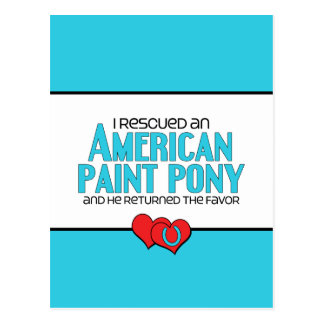 I Rescued an American Paint Pony (Male Pony) Postcard