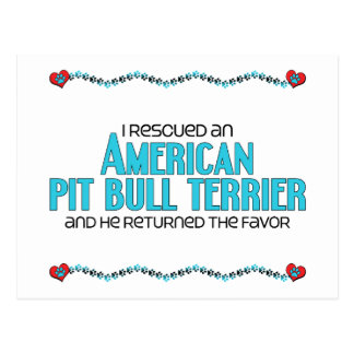 I Rescued an American Pit Bull Terrier (Male Dog) Postcard