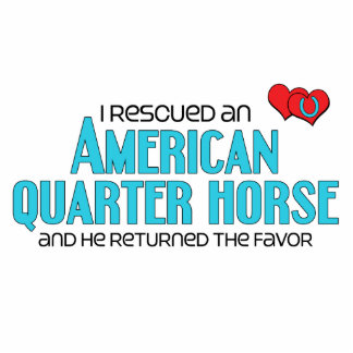 I Rescued an American Quarter Horse (Male Horse) Photo Sculptures