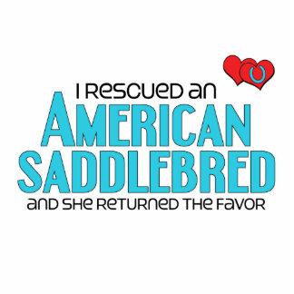 I Rescued an American Saddlebred (Female Horse) Cut Out