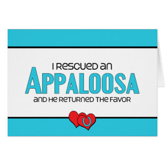I Rescued an Appaloosa (Male Horse) Cards