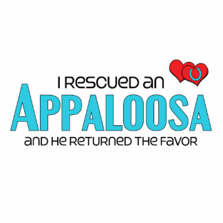 I Rescued an Appaloosa (Male Horse) Photo Cut Outs
