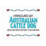 I Rescued an Australian Cattle Dog (Male Dog) Post Card