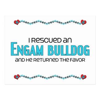 I Rescued an EngAm Bulldog (Male) Dog Adoption Postcard