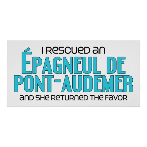 I Rescued an Épagneul de Pont-Audemer (Female Dog) Posters
